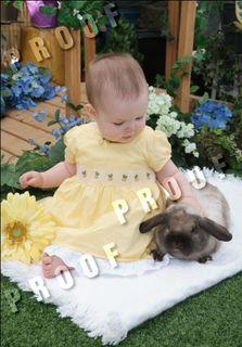 Nono and Bunny are friends.